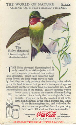 "The World of Nature, Series V, ""Among Our Feathered Friends"" ... the Ruby-Throated Hummingbird, card distributed by the Coca-Cola Co., circa 1930s"