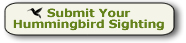 Click to submit your hummingbird sighting